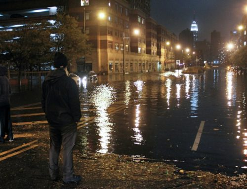 New York City Is Weighing Ambitious Plans for Flood Defenses