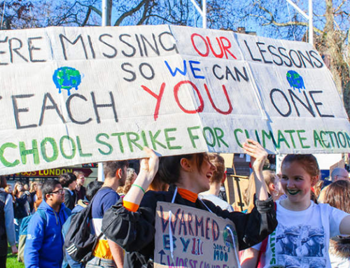 Youth Climate Movement, Bright Light During Troubled Times
